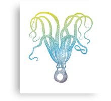 colorful octopus silhouette Canvas Print