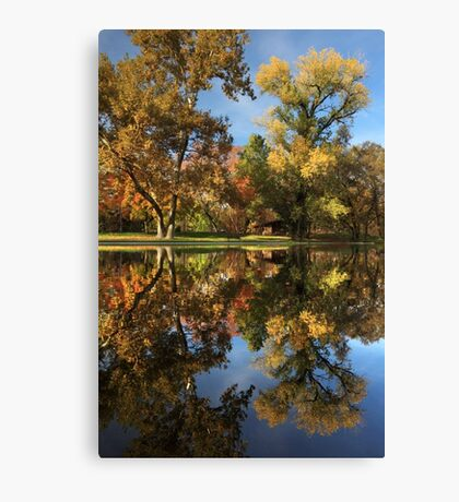 Sycamore Pool Reflections Canvas Print