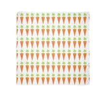 Cute Carrot cartoon collection : bright Carrots Scarf