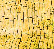 OLD YELLOW (Damaged) by leethompson