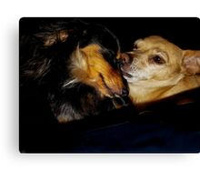 Silly Dogs Canvas Print