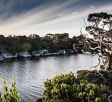 Glenelg River by merridylindner