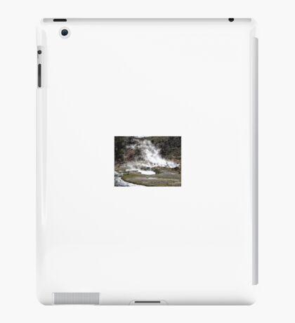 Amazing Hot Spring near Owens Valley, 2011 iPad Case/Skin