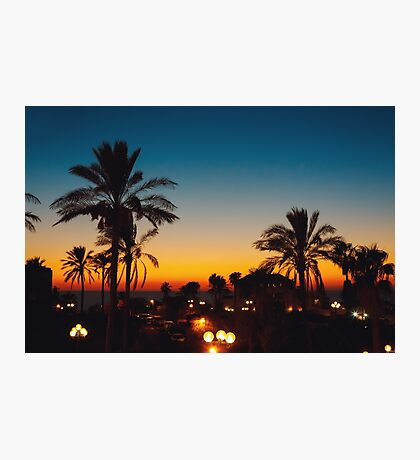 Summer sunset at a coastline with palm tree Photographic Print