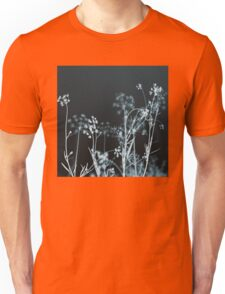 In the Still of the Night Unisex T-Shirt