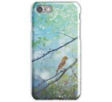 Goldfinch, Green, and Blue iPhone Case/Skin
