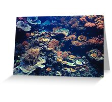 Tropical Aquarium with Small Fishes and Corals Greeting Card