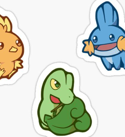 Pokémon / Gen 3 Starters Sticker
