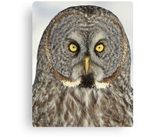 Bet you'll blink first Canvas Print