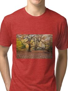 Autumn Colours in the sunshine before the storm Angus predicted tomorrow  Tri-blend T-Shirt