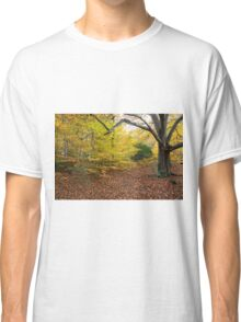 Autumn Colours in the sunshine before the storm Angus predicted tomorrow  Classic T-Shirt