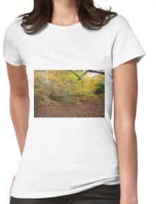 Autumn Colours in the sunshine before the storm Angus predicted tomorrow  Womens Fitted T-Shirt