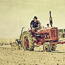 McCormick Ploughing  by Rob Hawkins