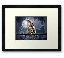 Listening to Gaia Framed Print