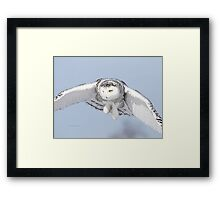 Target Acquired Framed Print