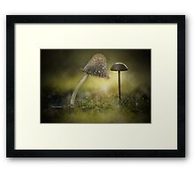 Staying tall... Framed Print