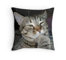 Pondering The Mysteries Of The Universe Throw Pillow