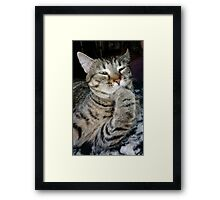 Pondering The Mysteries Of The Universe Framed Print