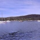 Deep Bay Panorama 5:1 by Andrew Bonnitcha