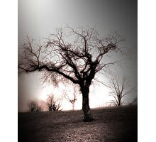 spirit Photographic Print