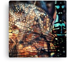 Veins & Chitin Canvas Print