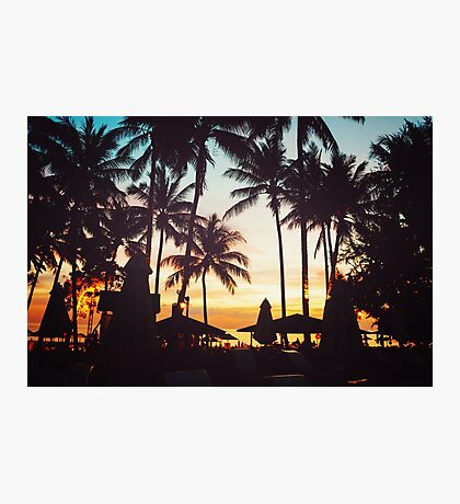 Tropical beach with palm trees Photographic Print