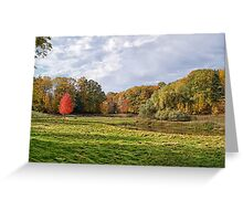 The Willow and The Little Red Tree Greeting Card