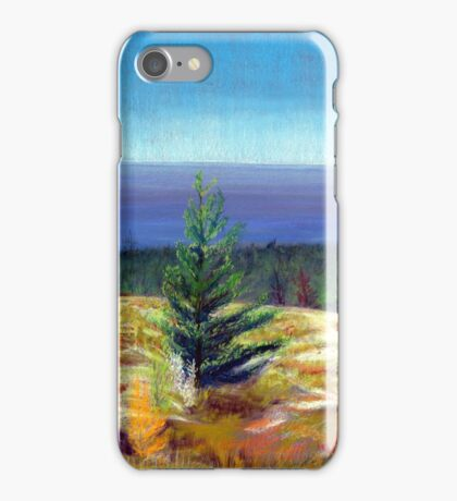Lake Michigan Coast iPhone Case/Skin