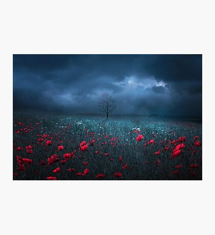 Dark Field Photographic Print