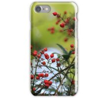 Christmas Colors iPhone Case/Skin