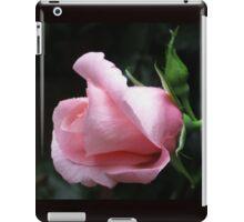 Sleeping Beauty - Dreamy Pink Rose iPad Case/Skin