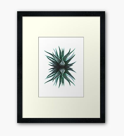 Abstract Tropical Cactus Framed Print