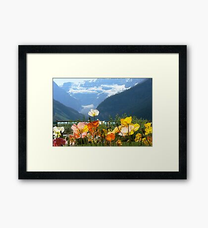Ice and Fire Framed Print