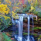 Dry Falls In Fall by Savannah Gibbs