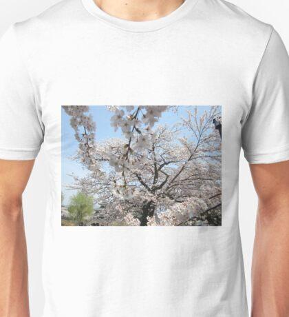 Sakura - 24 Unisex T-Shirt
