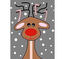 Happy Reindeer Photographic Print