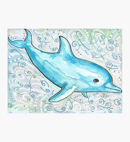 Dolphin Starts with D Photographic Print