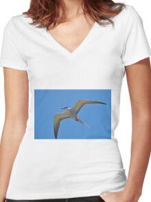 Australian Bridled Tern Women's Fitted V-Neck T-Shirt