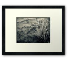 Weather Report Framed Print