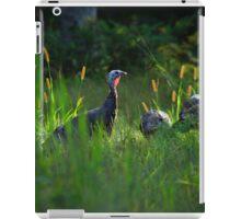 Wild Turkeys in Some Grass iPad Case/Skin