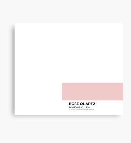Pantone Rose Canvas Print