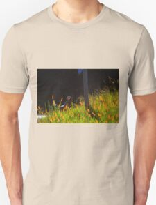 Single Wild Turkey Backlit in Some Grass Unisex T-Shirt