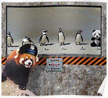 The Tuxedo Crimes... Damn Panda Poster