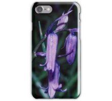 Bluebells Lickey Woods Birmingham England 19840513 0047 iPhone Case/Skin