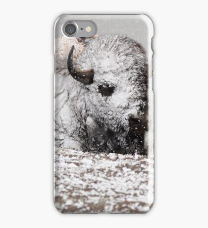Hayden Valley May iPhone Case/Skin