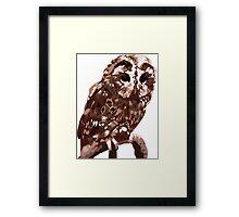 Tawny Owl Illustration Framed Print