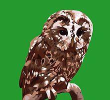 Tawny Owl Illustration by MickeyEdwards