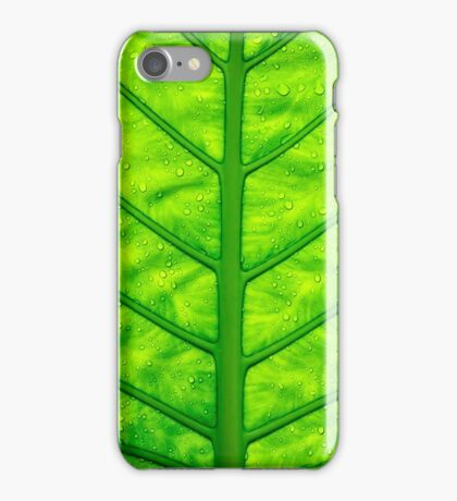 Close up green leaf texture iPhone Case/Skin