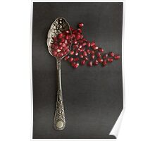 Silver Spoon and Pomegranate Seeds. Poster