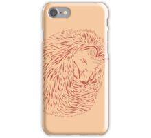 Sleeping Hedghog iPhone Case/Skin